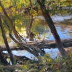 brandywine-river-s