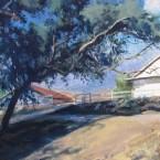prescott-ranch